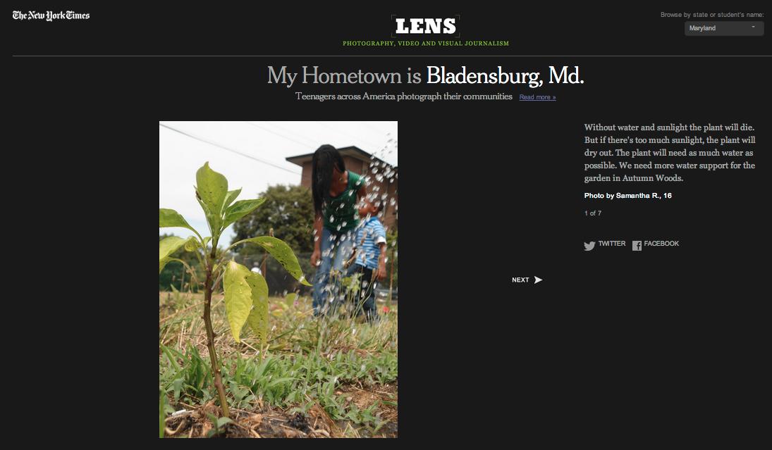 NY Times Lens Blog